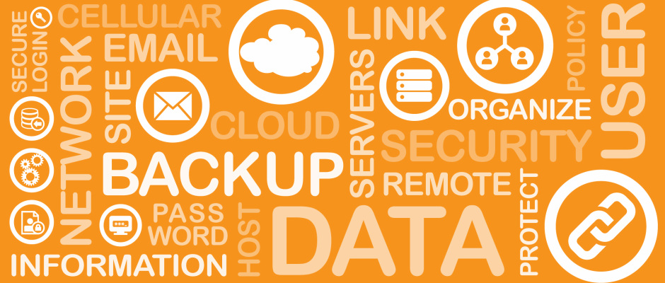 Computer Data Backup Services